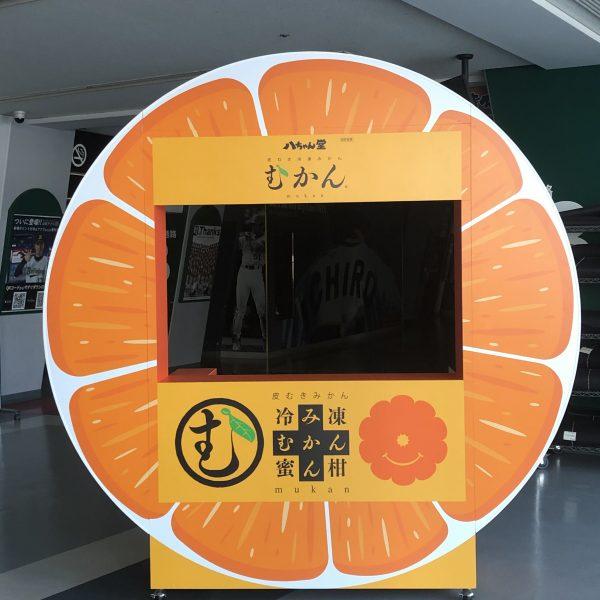 池カラ・むかん・ITEMAE DOGS 球場内の売店看板製作工事